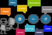 Hire Wordpress Developer at affordable price