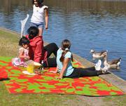 Shop Large Outdoor Rugs in Australia