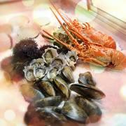 Exquisite Lobster & Oyster Bar in Melbourne