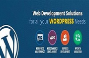 Acquire the professional WordPress developers in Melbourne